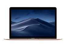 "MacBook 12"" Retina Core m3 1.2GHz/ 8GB/ 256GB/ Intel HD 615/ Gold"