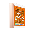 iPad mini Wi-Fi 256GB Gold