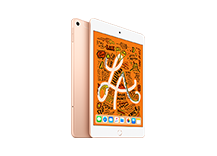 iPad mini Wi-Fi + Cellular 64GB Gold